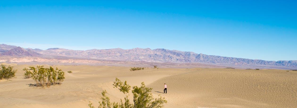 aavikko, autiomaa, dyynit