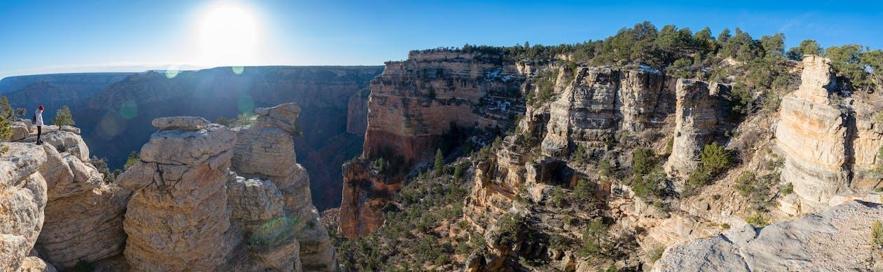 ağaçlar, büyük Kanyon, çıkmak