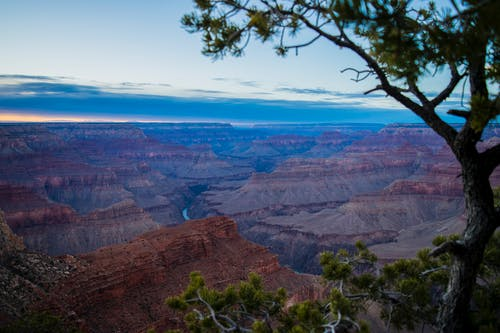 Kostenloses Stock Foto zu baum, blau, canyon, farbe