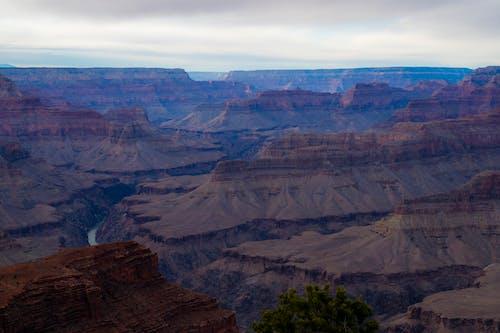 Kostenloses Stock Foto zu baum, berge, canyon, dürr