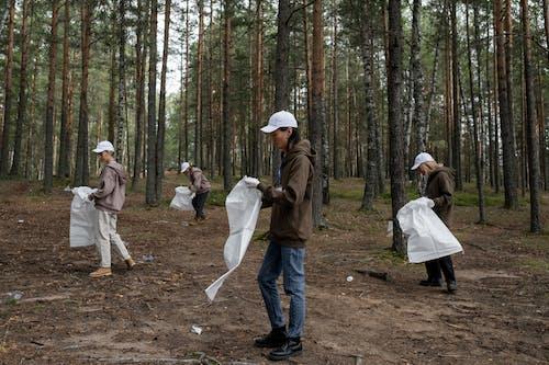 Δωρεάν στοκ φωτογραφιών με ανακύκλωση, γυναίκες, δασικός