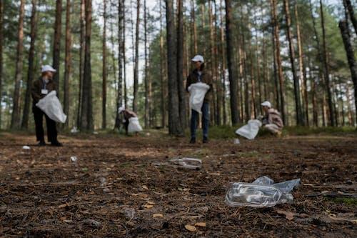 森の中のリサイクル可能なものを拾うクリーンアップコミュニティ