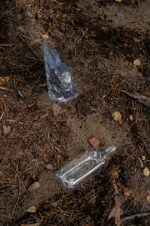 Clear Glass Bottle on Brown Dried Leaves