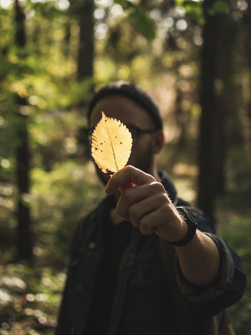 A Man Holding a Leaf