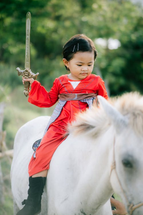 Free stock photo of cavalry, child, cute