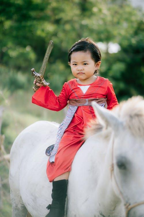 Free stock photo of animal, cavalry, child