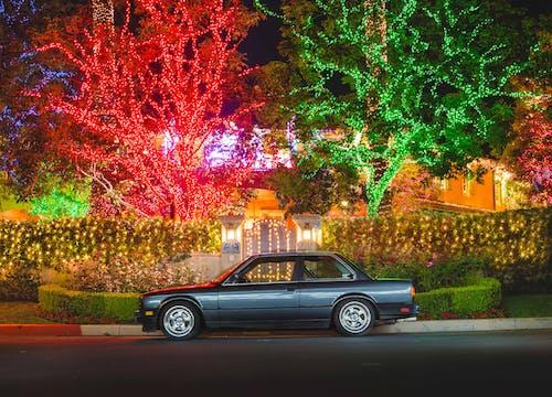 Ingyenes stockfotó autó, fák, fények témában
