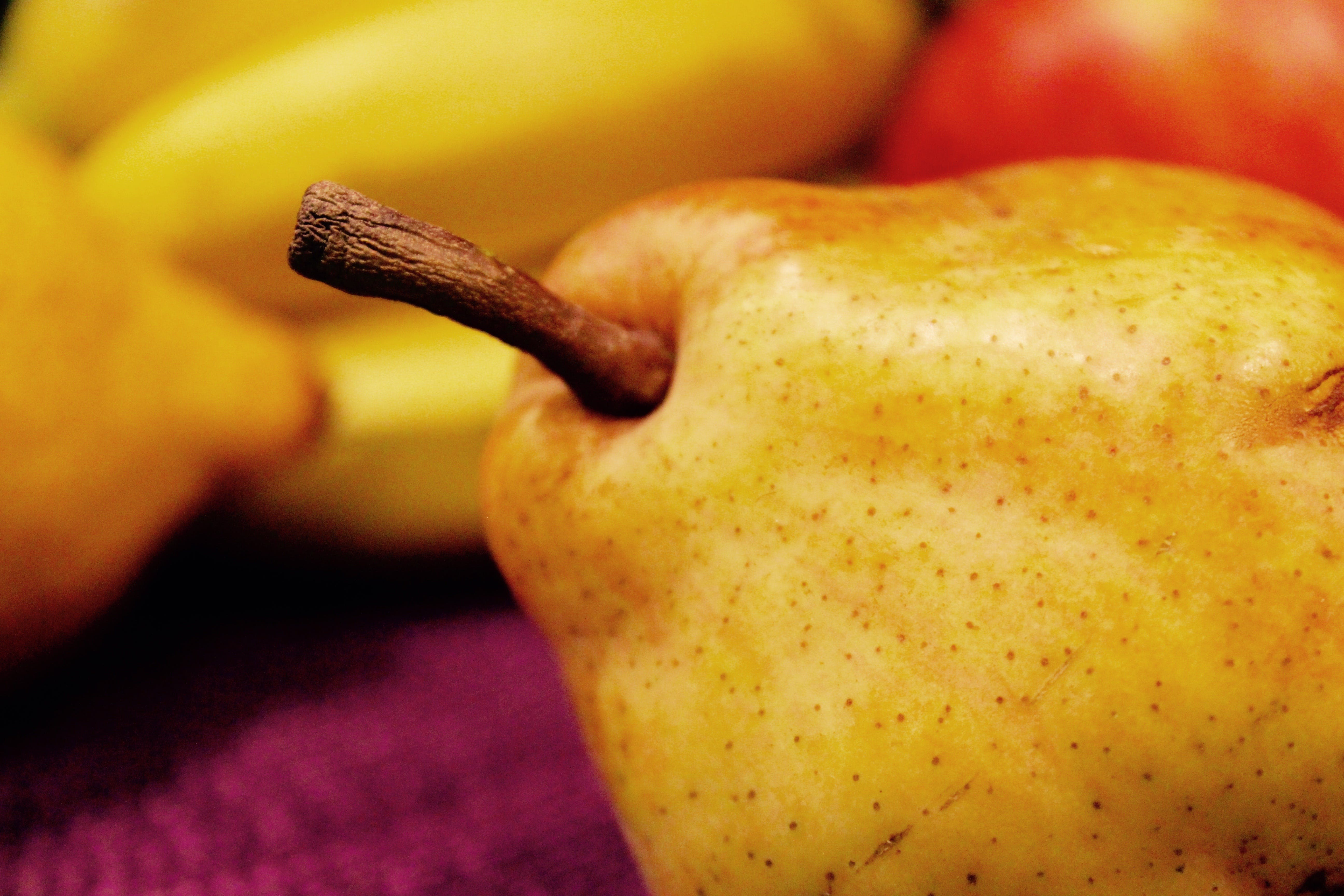 Free stock photo of fruit, pear
