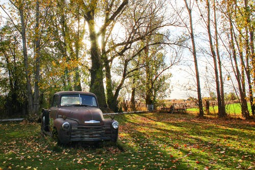 Kostenloses Stock Foto zu bäume, fahrzeug, gras, land