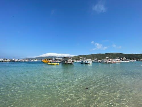 Gratis stockfoto met baai, blauwgroen, boot