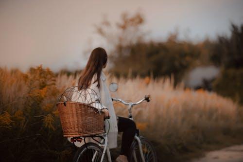 Gratis lagerfoto af barn, cykel, efterår