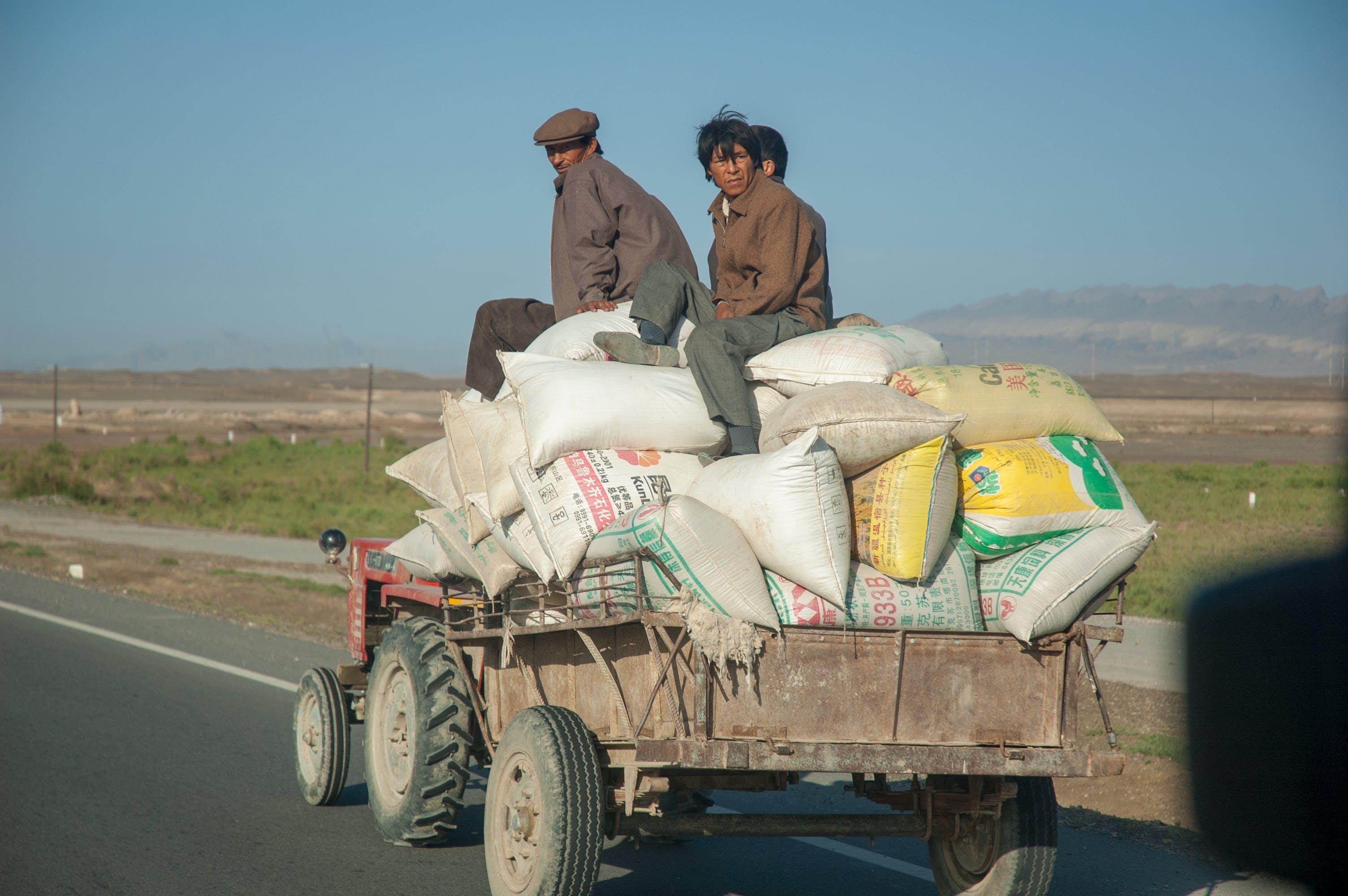 china, desert, farmers