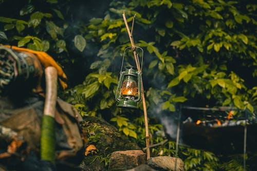 Foto profissional grátis de abajur, acampamento, água
