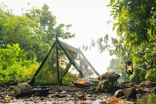 Foto profissional grátis de acampamento, água, ao ar livre