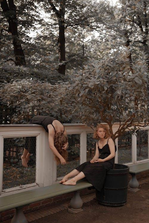 검정 드레스, 기댄, 나무의 무료 스톡 사진