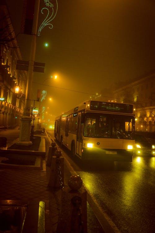 Immagine gratuita di autobus, città, esterno