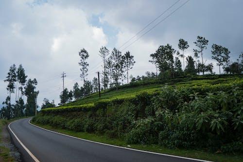 Základová fotografie zdarma na téma čištění, fotografie přírody, mraky, silnice