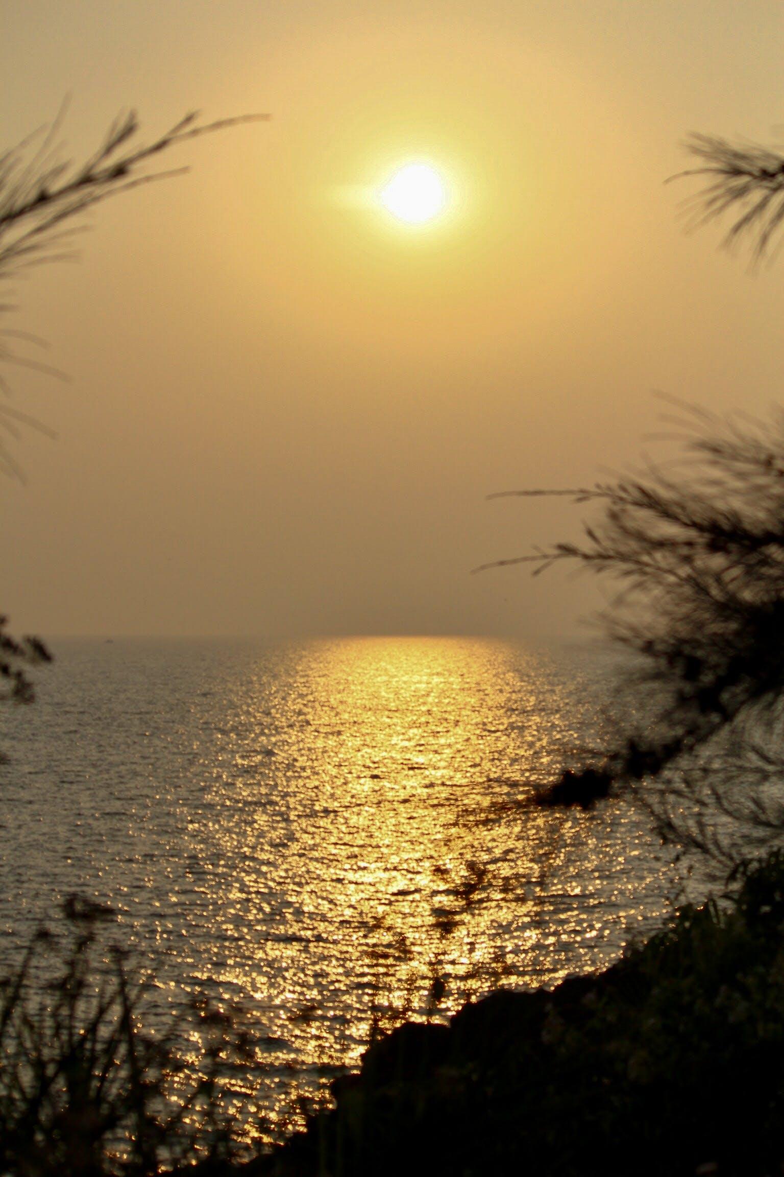 Free stock photo of beach, evening sun, water