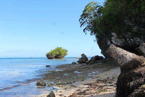 Free stock photo of beach, nature, seashore