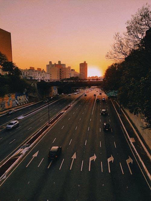 Foto profissional grátis de automóveis, brasil, carros
