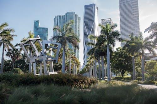 Kostenloses Stock Foto zu gebäude, grünes gras, hochhäuser