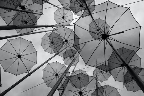 Free stock photo of black and white, street, umbrellas