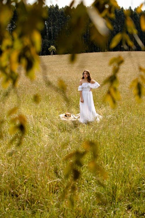 アダルト, アリーナ, オープンフィールドの無料の写真素材
