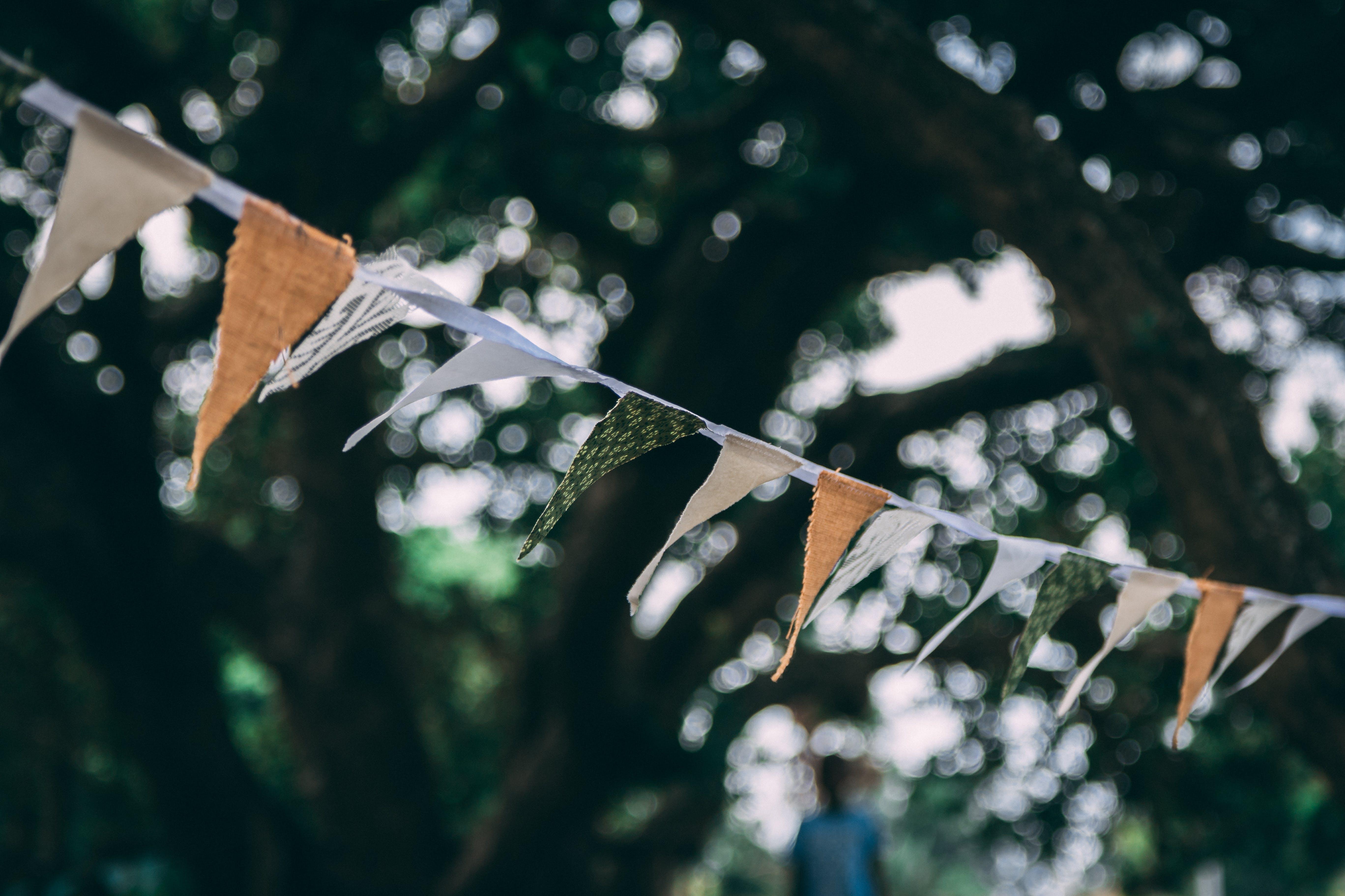 Δωρεάν στοκ φωτογραφιών με Άνθρωποι, βροχή, δέντρα, δέντρο