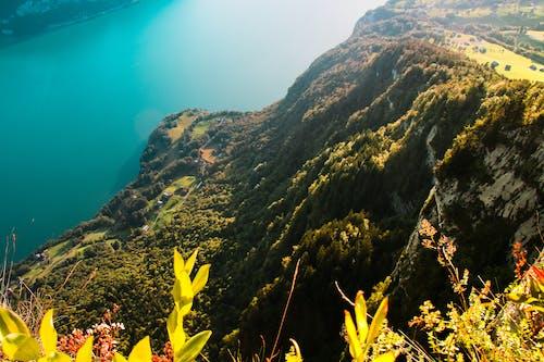 Free stock photo of alpine, alps, background, blue lagoon