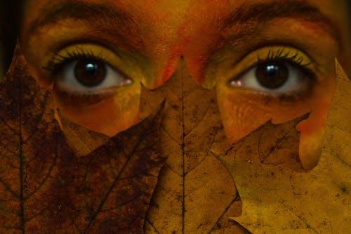 คลังภาพถ่ายฟรี ของ ดวงตา, ตา, ภาพพอร์ตเทรต