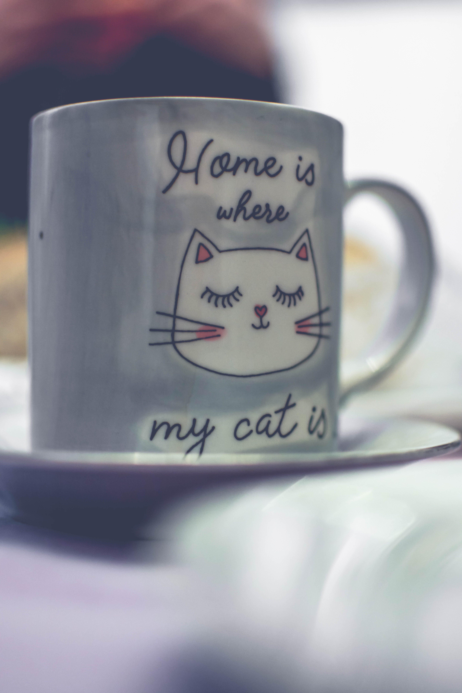 White Ceramic Mug With Saucer