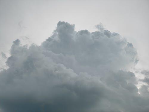Бесплатное стоковое фото с буря, ветер, высокий