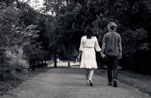 Fotos de stock gratuitas de adulto, amor, árbol