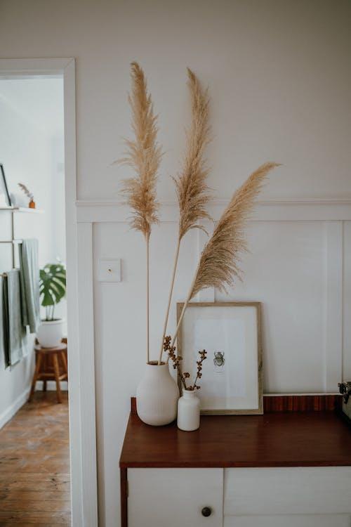 Kostnadsfri bild av arkitektur, dröm hus, familj