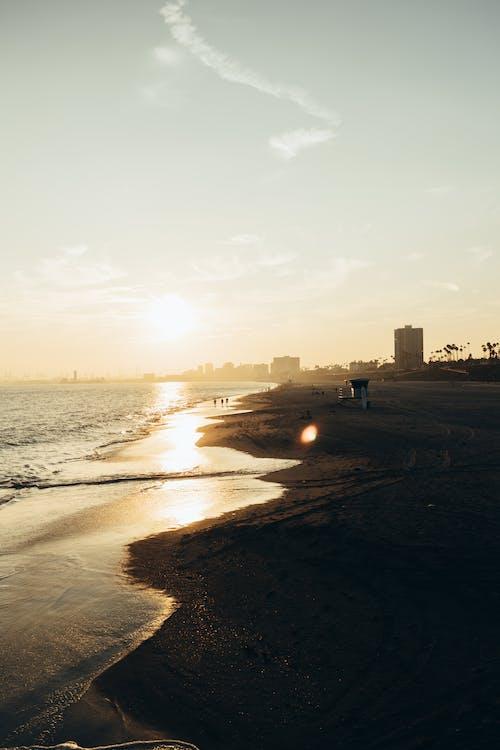 People Walking on Beach during Sunset