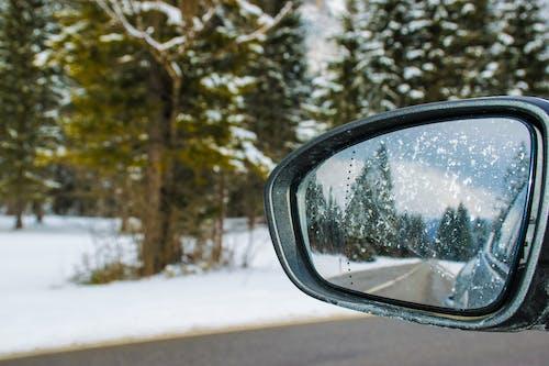 Бесплатное стоковое фото с автомобиль, белый, боковое зеркало, деревья