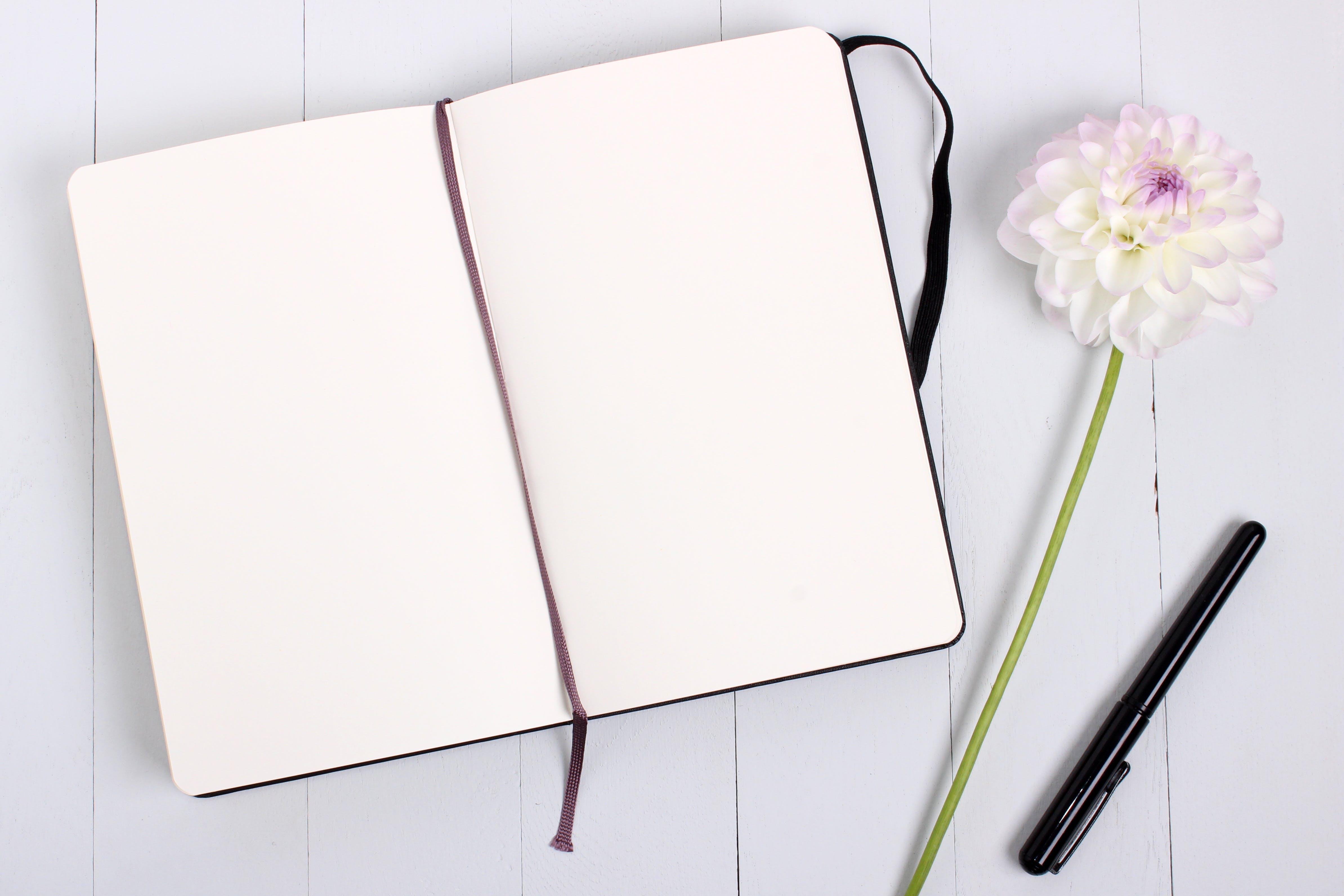 Kostenloses Stock Foto zu notizbuch, stift, blume, papier