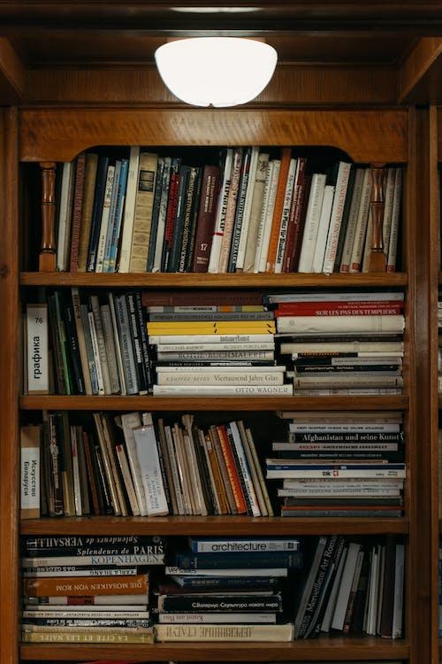 Foto profissional grátis de biblioteca, de madeira, estante
