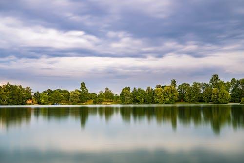 Foto d'estoc gratuïta de aigua, arbres, cel