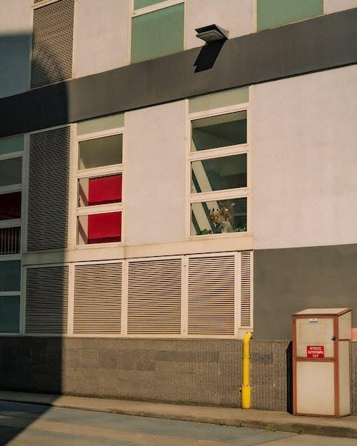 Immagine gratuita di cassetta di emergenza, città, facciata di edificio