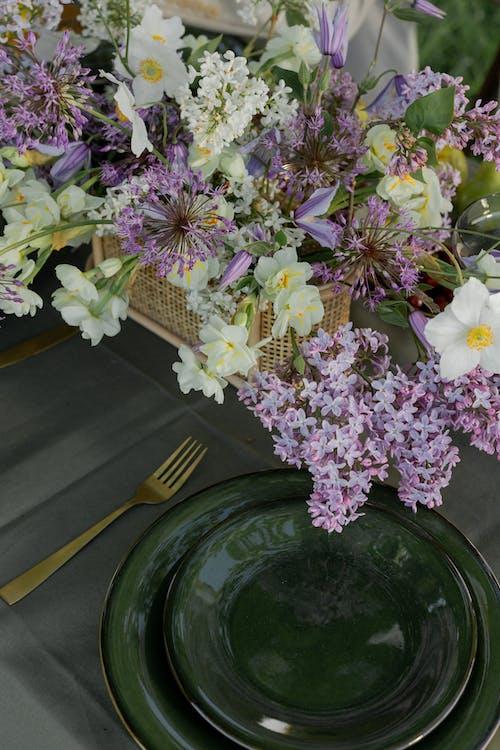 Darmowe zdjęcie z galerii z danie, dzień, kwiaty