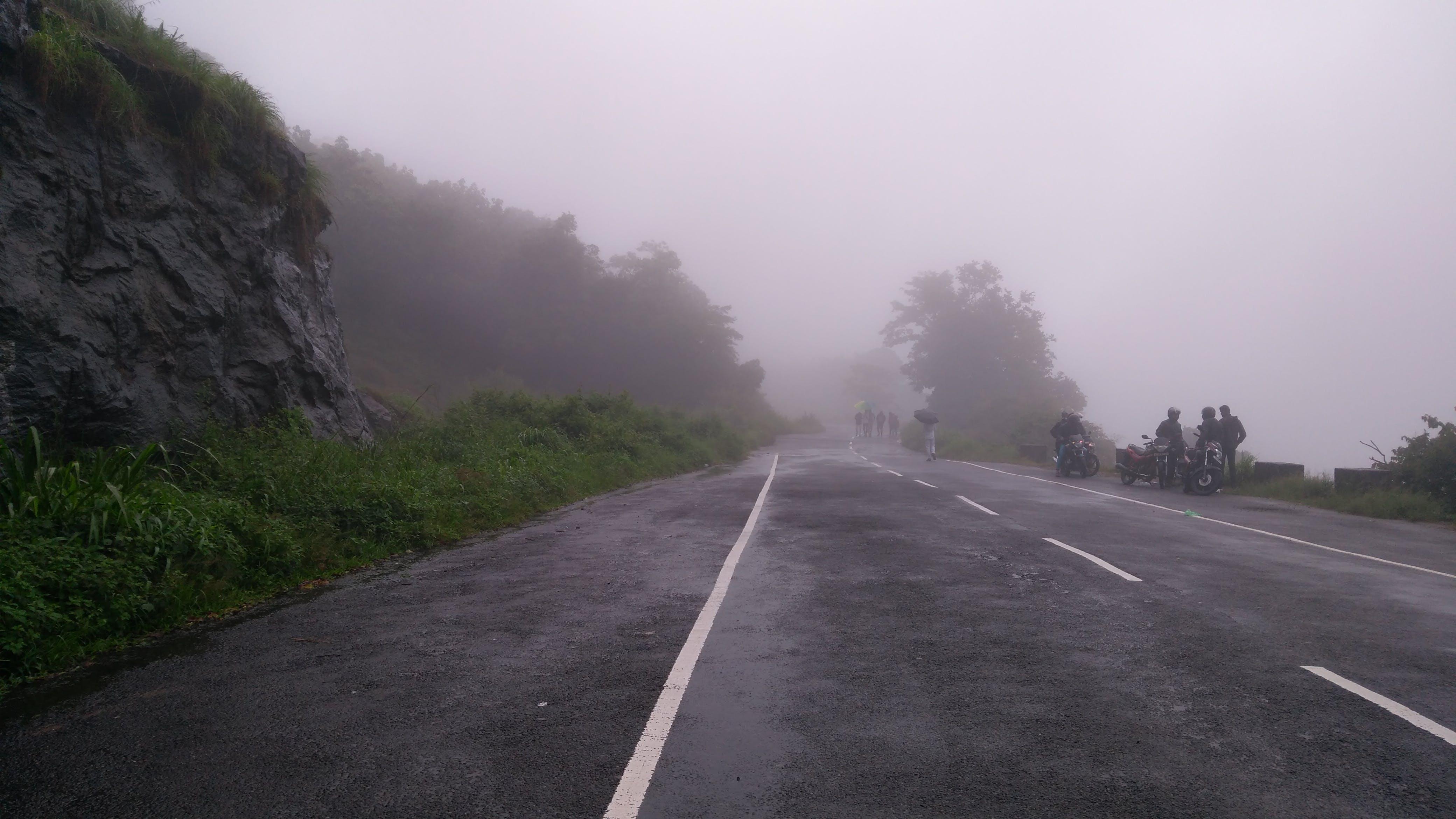 Free stock photo of fog, foggy, road
