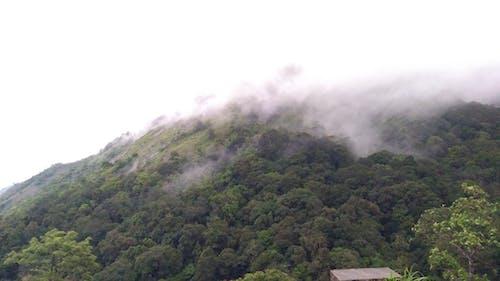 Fotos de stock gratuitas de montaña, niebla