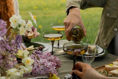 Imagine de stoc gratuită din băut, brațul uman, buchet de flori