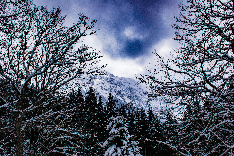 Free stock photo of Bayern, ettal, germany, snow