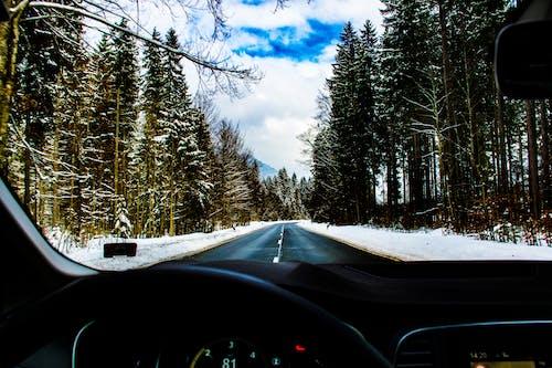 Gratis lagerfoto af asfalteret vej, biltur, korsvej, kørsel