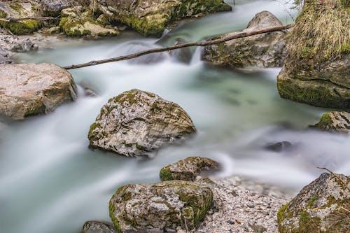 Ảnh lưu trữ miễn phí về đá, lưu lượng, Nước, suối