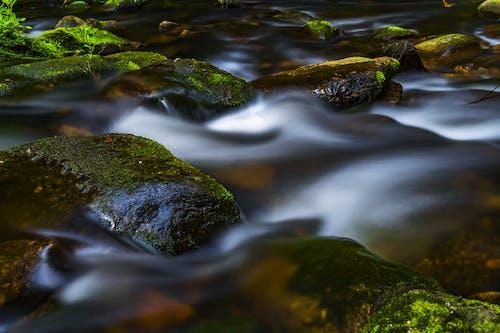 Photos gratuites de cailloux, crique, eau, écoulement courant