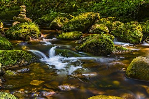 Ingyenes stockfotó folyam, folyó, kavicsok egyensúlyozása, kövek témában