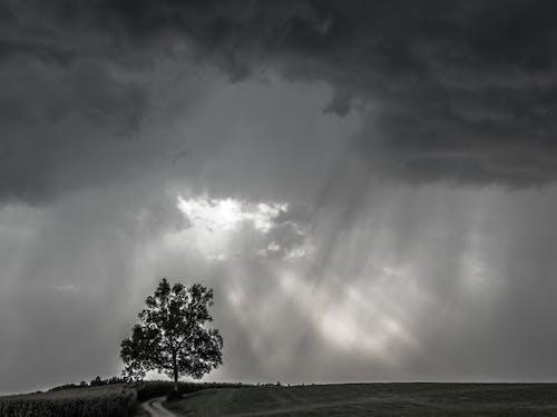 Kostnadsfri bild av åskväder, bakgrundsbild, molnbildning, mörka moln